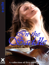 In the Saddle (eBook): A collection of five erotic stories